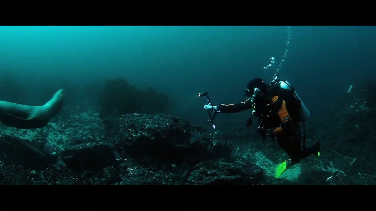 Divers Documenting Underwater