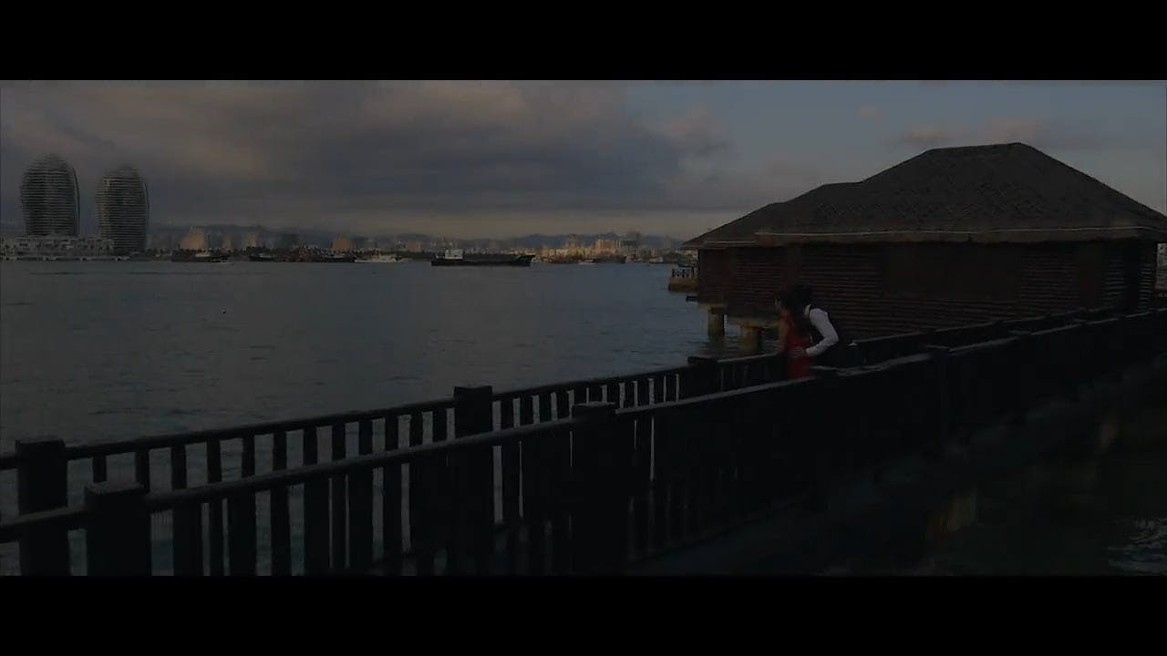 Video Of Loving Couple By The Sea