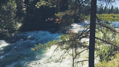 Footage Of Flowing Water