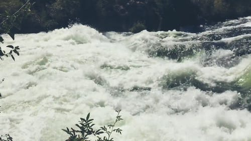 A Rapid Stream Footage