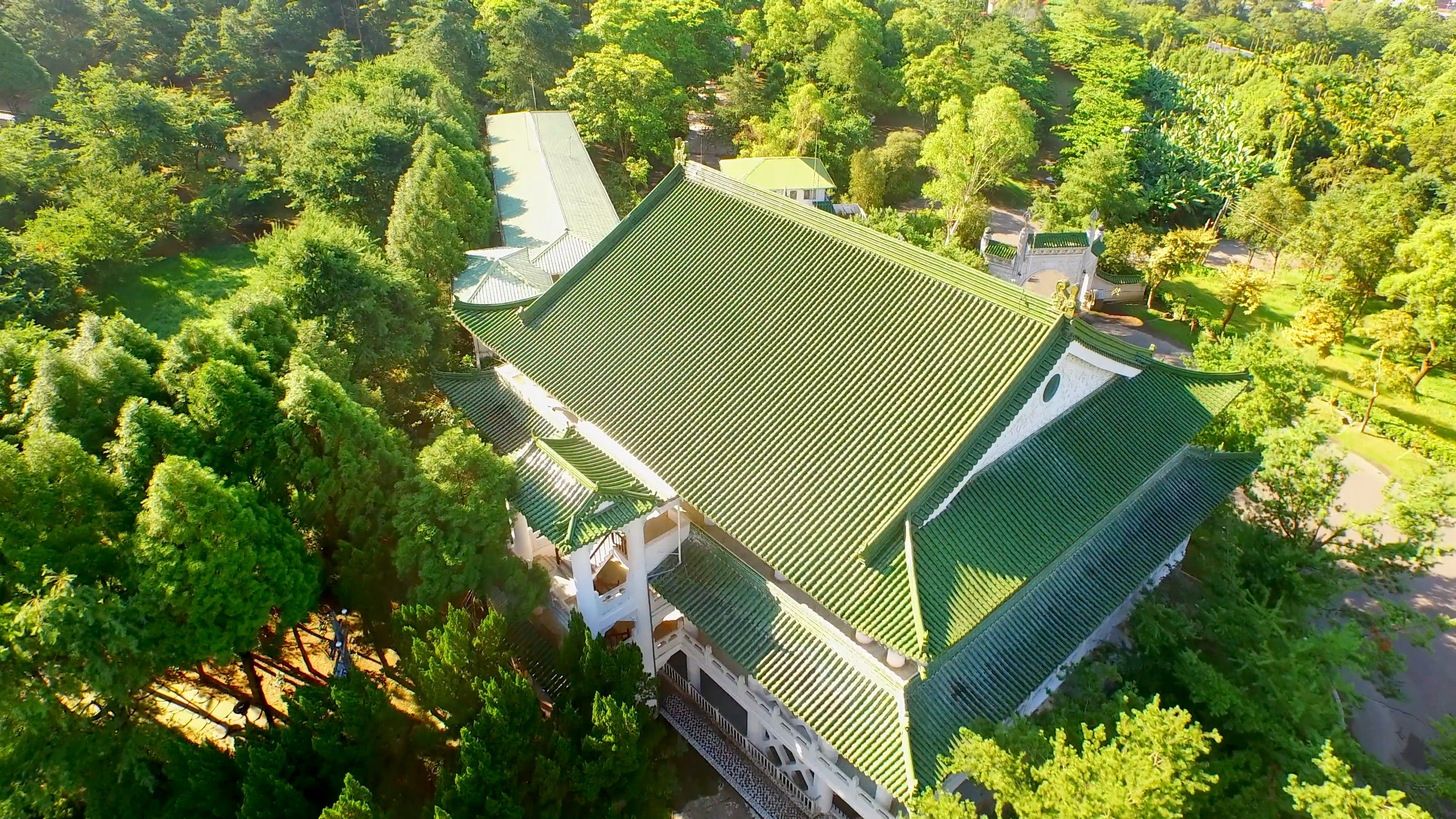 Drone Shot Roof And Trees