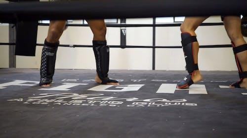 People Doing Kickboxing
