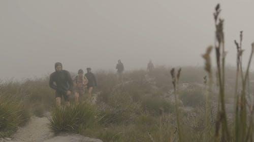 Friends Hiking on a Foggy Mountain