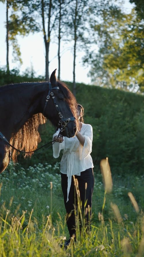 Woman holding a Horse