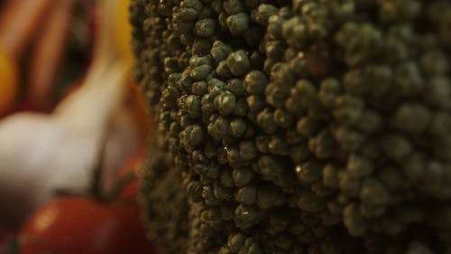 Close-up Footage of Fresh Vegetables