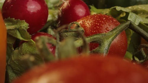 Close Up Shot of Fruits on the Table