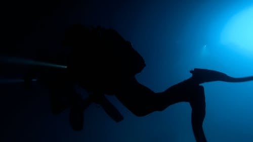 Footage of Divers Underwater