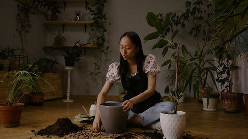 A Woman Planting an Indoor Plant