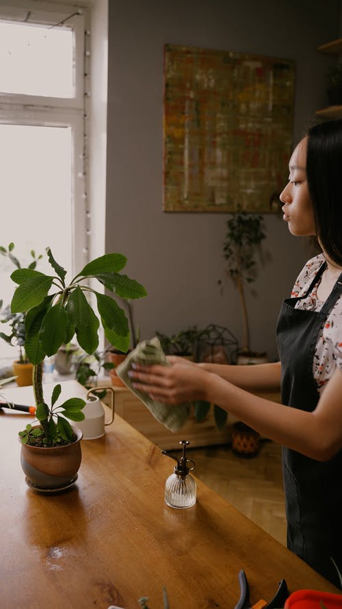 A Woman Watering the Plant
