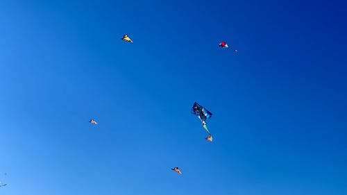 Colorful kites flying against clear sky