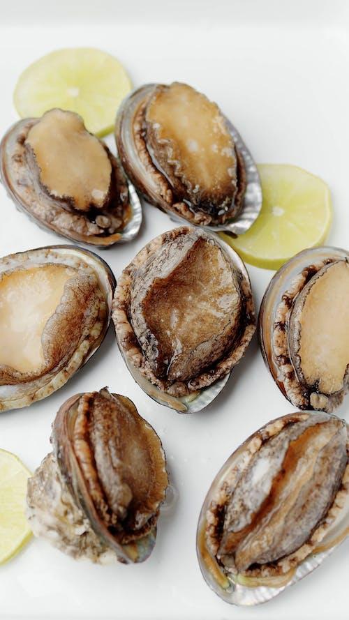 Fresh Abalone and Lemon Slices