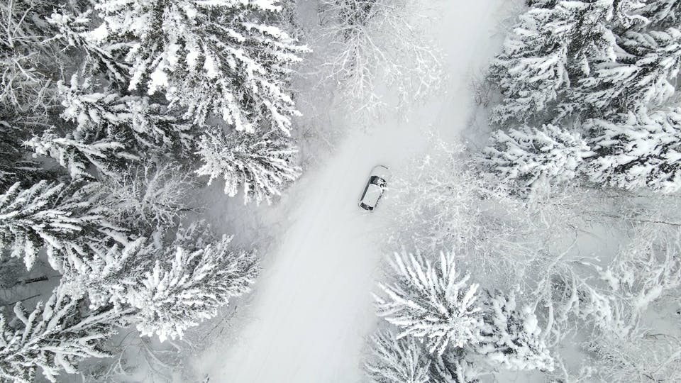 Aerial Footage Of Trees Covered With Snow