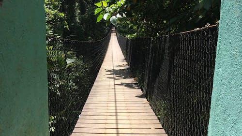 Long Narrow Wooden Bridge