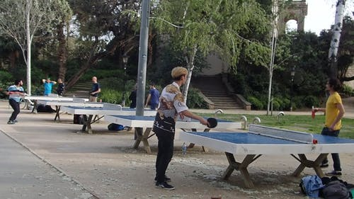 Table Tennis Players Training